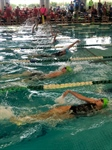 Fair Play Alive and Well in Swimming Competition