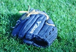 Fraser River Girls Softball Win Silver Medal