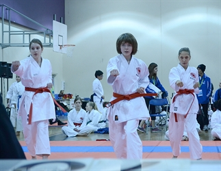 Karate: Katas Bring It To The Games